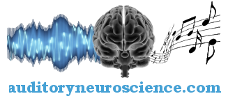 auditoryneuroscience.com